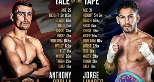 Crolla Vs Linares - Tale of the Tape