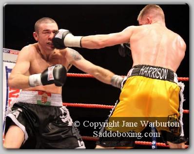 RobNortonDavidDolanundercard1 Ringside Boxing: Rob Norton vs. David Dolan Undercard