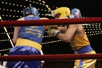Ali v OConnor action Ringside Boxing Report: NY Daily News Golden Gloves   Part II
