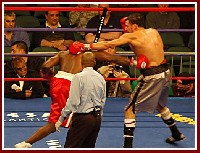 Ringside Boxing Report: Hasim Rahman   James Toney