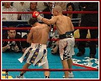 Cotto Malignaggi10 Ringside Boxing Report: Miguel Cotto   Paulie Malignaggi