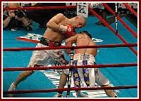 Cotto Malignaggi12 Ringside Boxing Report: Miguel Cotto   Paulie Malignaggi