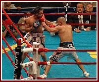 Cotto Malignaggi13 Ringside Boxing Report: Miguel Cotto   Paulie Malignaggi