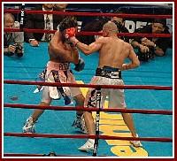 Cotto Malignaggi16 Ringside Boxing Report: Miguel Cotto   Paulie Malignaggi
