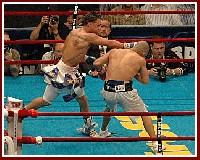 Cotto Malignaggi3 Ringside Boxing Report: Miguel Cotto   Paulie Malignaggi