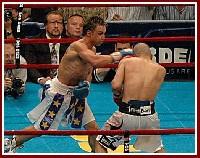 Cotto Malignaggi4 Ringside Boxing Report: Miguel Cotto   Paulie Malignaggi