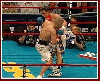 Cotto Malignaggi5 Ringside Boxing Report: Miguel Cotto   Paulie Malignaggi