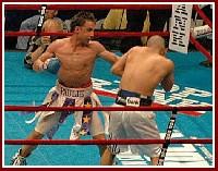 Cotto Malignaggi6 Ringside Boxing Report: Miguel Cotto   Paulie Malignaggi