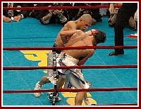 Cotto Malignaggi7 Ringside Boxing Report: Miguel Cotto   Paulie Malignaggi