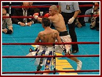 Cotto Malignaggi8 Ringside Boxing Report: Miguel Cotto   Paulie Malignaggi