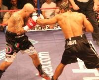 David Haye Giacobbe Fragomeni131 Ringside Boxing Report: The Haymaker David Haye v Giacobbe Fragomeni