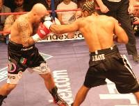 David Haye Giacobbe Fragomeni221 Ringside Boxing Report: The Haymaker David Haye v Giacobbe Fragomeni