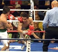 Nino Villoria21 Ringside Boxing Report: Erik Morales   Manny Pacquiao