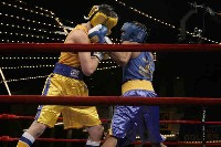 Vargas v Hendrickson action Ringside Boxing Report: NY Daily News Golden Gloves   Part II