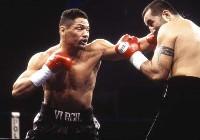Boxing Info: Virgil Hill Vs Henry Maske